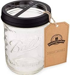 Jarmazing Products Mason Jar Toothbrush Holder
